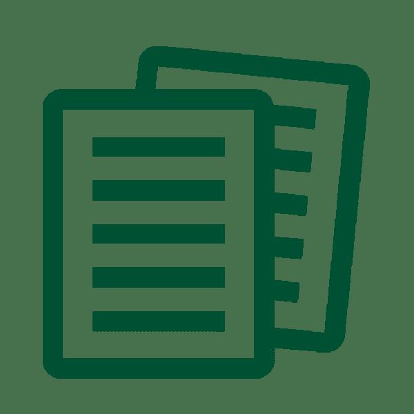 Rivilė - dokumentacija